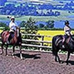 Llangorse Riding Centre